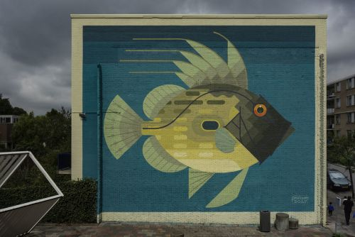 Amok Island Paints Modern Minimalist Murals of Native Flora and Fauna