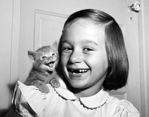 A New Book Compiling Hundreds of Timeless Feline Photos by Walter Chandoha is the Cat's Meow