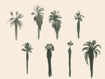 Digital Palm Studies