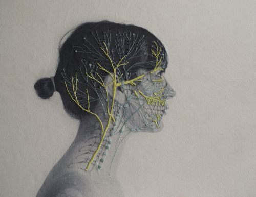 Self Portraits Embroidered With Images of Blood Vessels, Bones, and Muscle Tissue by Juana Gómez