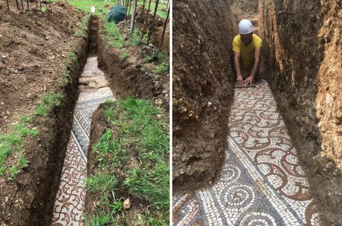 Archaeologists Excavate a Stunning Roman Mosaic That's Untarnished From an Italian Vineyard