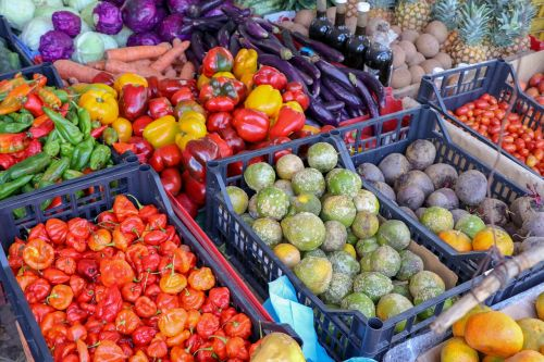 Best Local Markets to Cover When in Barcelona
