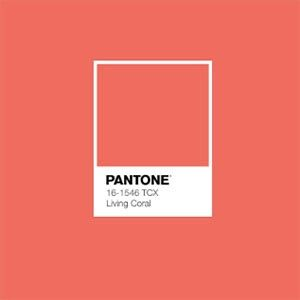 Pantone Color of the Year for 2019