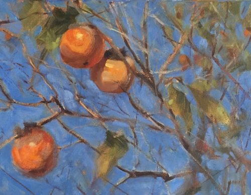 Persimmons and blue sky by margaret aycock