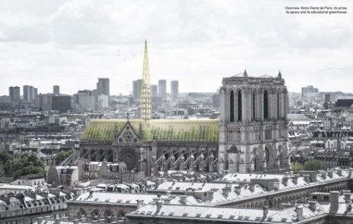Studio NAB Designs a Greenhouse Roof for Notre-Dame