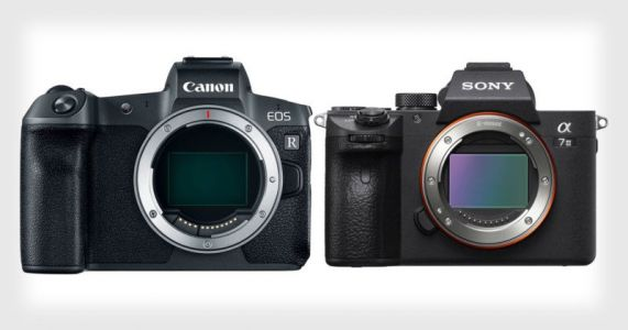 Why Canon Shooters Need to Consider Sony Cameras