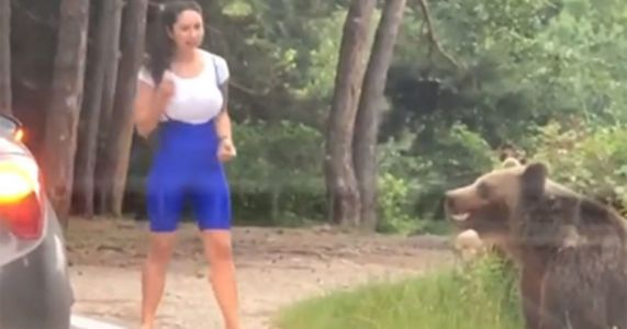 This Woman Tried to Take a Picture with a Wild Bear