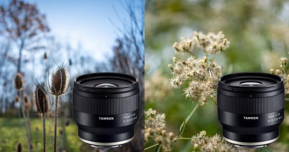 Tamron 24mm f/2.8 and 35mm f/2.8 Review: Compact & Affordable Primes for Sony
