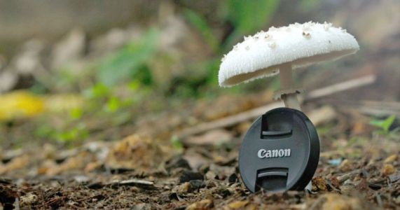 How to Avoid Losing Your Photography Gear: Here are 10 Tips