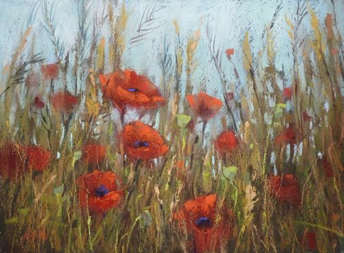 Poppies for Memorial Day
