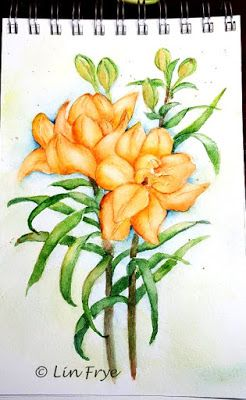 Journal - Asiatic Lilies - Lin Frye