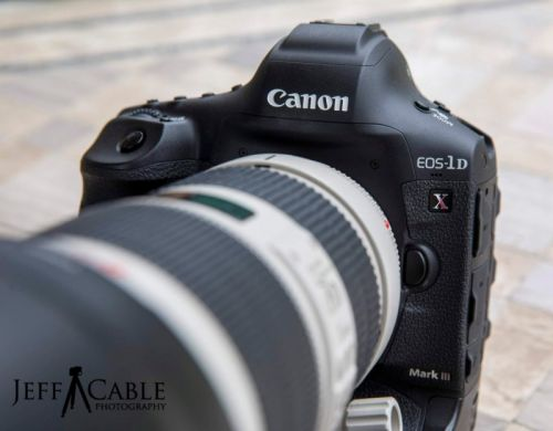A Real-World Review of the Canon 1D X Mark III