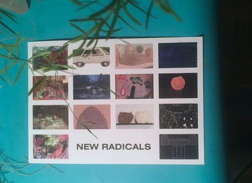 New Radicals at Cerulean Arts