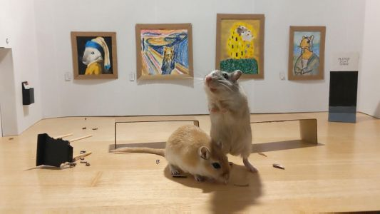 Two Curious Gerbils Visit a Miniature Art Museum Made by Their Quarantined Owners
