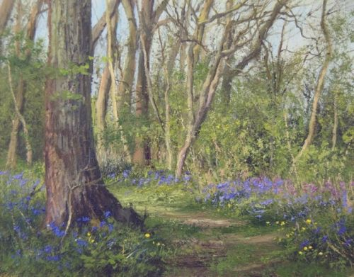 Bluebells and Campions, Short Wood