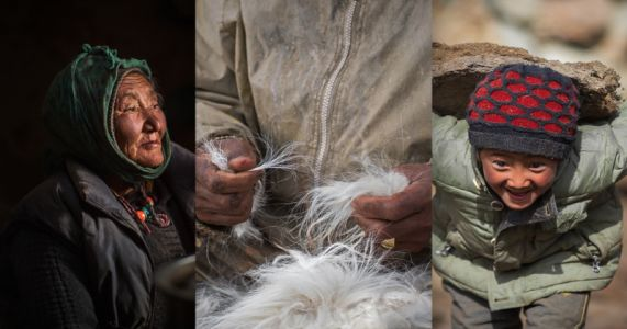 Photo Essay: Cashmere Crisis Looms in Himalayan Ice Desert