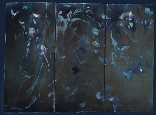Laura Blacklow on painterly photo processes