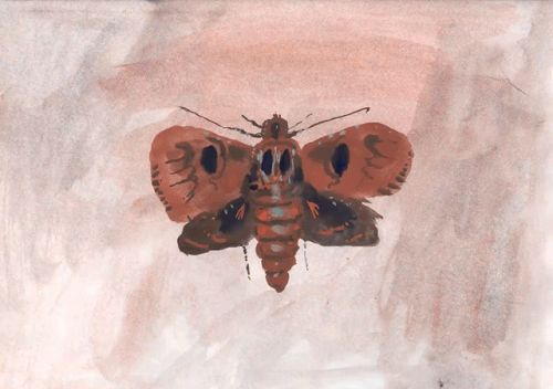 A Hand-Painted Moth Animation by Allison Schulnik Explores Motherhood and Metamorphosis