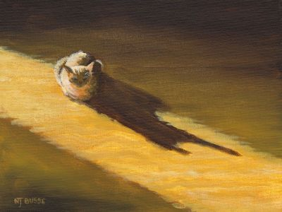 "Original Cat Painting Feline Art ""Late Afternoon Sun"" by Colorado Western Landscape Painter Nancee jean Busse"
