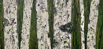 """Aspen Tree Painting, Abstract Aspen Art """"UP CLOSE AND PERSONAL"""" by International Contemporary Artist Kimberly Conrad"""