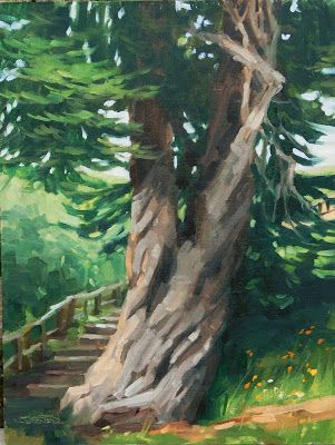 Twisting Pine -a plein air painting from Cambria, CA