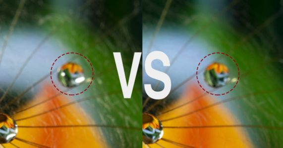 Cross Polarization: What It Is and Why It Matters