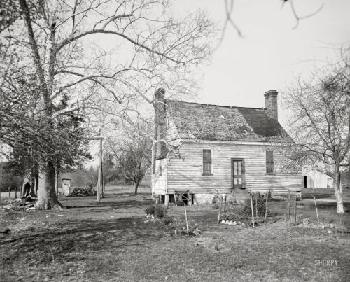The Old Homestead: 1905