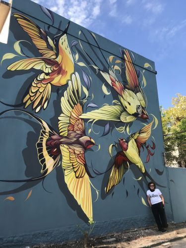 A Flurry of Feathers and Leaves Surround Spirited Birds in Fio Silva's Vivid Murals
