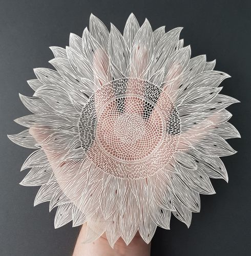 Bubble-Covered Flowers and Ornate Animals Formed From Cut Paper by Pippa Dyrlaga