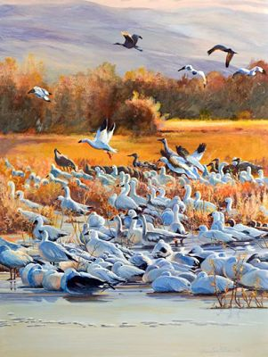 "Original Bird Wildlife Landscape Painting ""Sunrise Burst at Bosque"" by Colorado Artist Nancee Jean Busse,Painter of the American West"