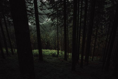 Theonlymagicleftisart: Dark Woods, Petr Klempa Check out these