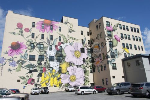 Bursts of Stylized Flowers by 'Ouizi' Transform Buildings Into Floral Canvases
