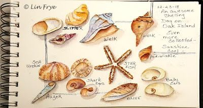 HAPPY NEW YEAR - SEASHELLS - LIN FRYE