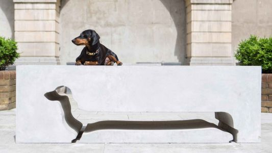 Dachshund Geoffrey Barkington's Silhouette Immortalized in a Stone Bench