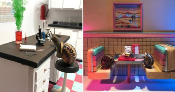 Artistic Duo Create Intricate Miniature Worlds for Creative Snail Photos