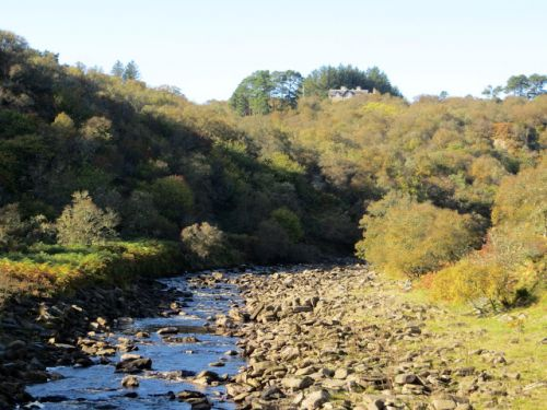 In Search of Autumn in Dunbeath Strath