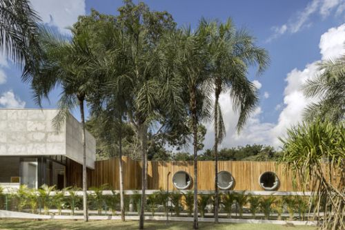 House of The Yellow Ipê / Leo Romano
