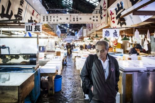 Photos of the Tsukiji Fish Market