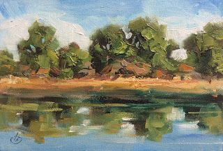 LANSCAPE & ART LESSONS by TOM BROWN