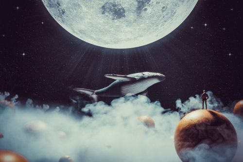 Creating Surreal Photo Art of Flying Whales in Space