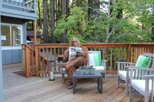 Bigfoot Poses in Hilarious Real Estate Photos for $1M House