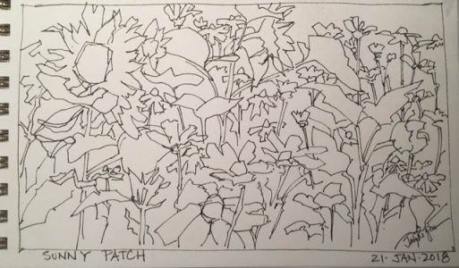 """Day 111 """"Sunny Patch"""" pen&ink 5 x 9"""
