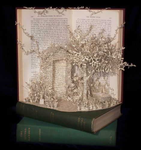 New Three Dimensional Narratives Composed from Discarded Books