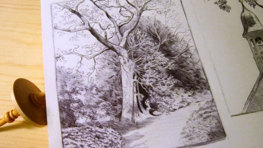 The Details of Trees