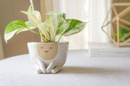 Houseplants Become Hairstyles for Smiling Anthropomorphic Planters by Ceramicist Abby Ozaltug