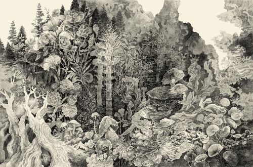 Otherworldly Ecosystems Populate Dense, Cross-Hatched Illustrations by Song Kang