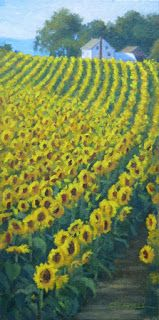 'Sunflower Hill' An Original Oil Painting by Claire Beadon Carnell