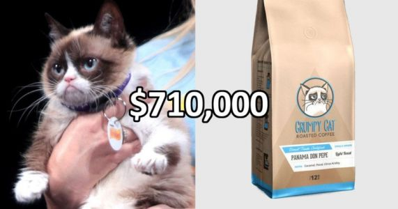 Grumpy Cat Wins $710,000 in Copyright Infringement Lawsuit