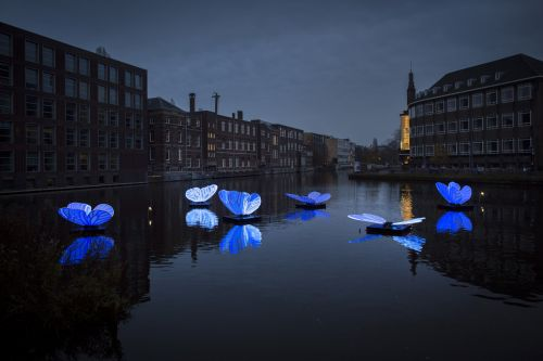 8th Annual Light Festival Illuminates Amsterdam with Glowing Sculptural Installations