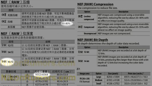 Nikon Working on a 60MP Mirrorless Camera with 16-Bit Raw Files and Better Compression